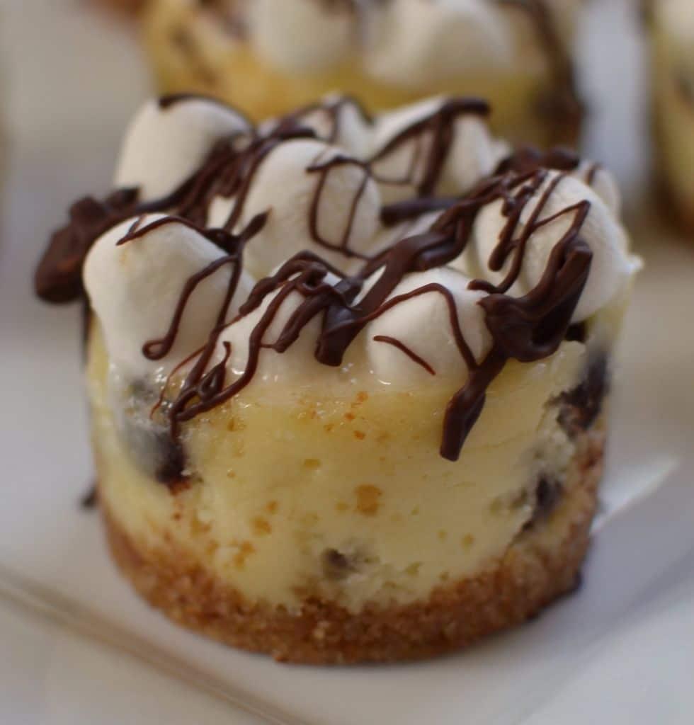Mini S'mores Cheesecakes (5)
