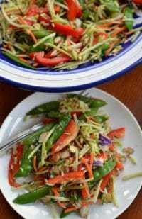 asian-broccoli-slaw-with-sesame-ginger-dressing-5