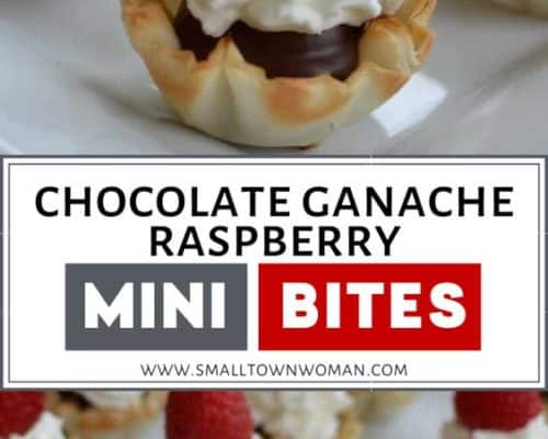 Chocolate Ganache Raspberry Mini Bites