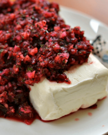 Cranberry Salsa (A Five Minute Gorgeous Holiday Appetizer)