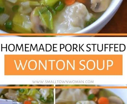 Pork Stuffed Wonton Vegetable Soup