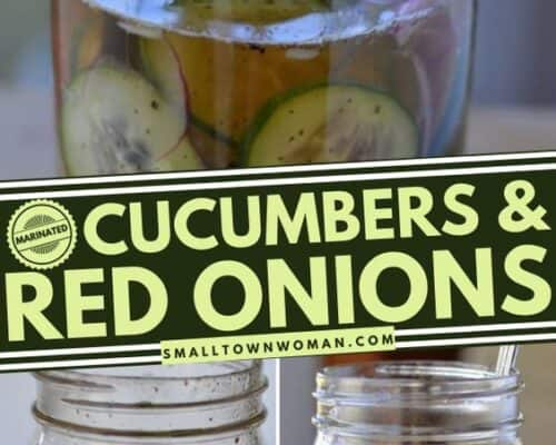 Marinated Cucumbers and Red Onions