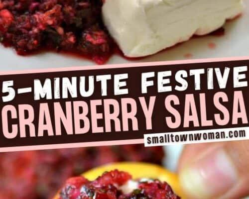 Five Minute Festive Cranberry Jalapeno Salsa