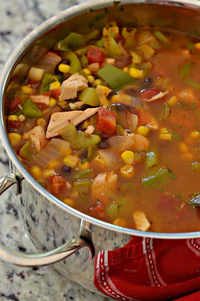 Make this Chicken Enchilada Soup Recipe for an easy, filling Fall dinner that saves great as leftovers