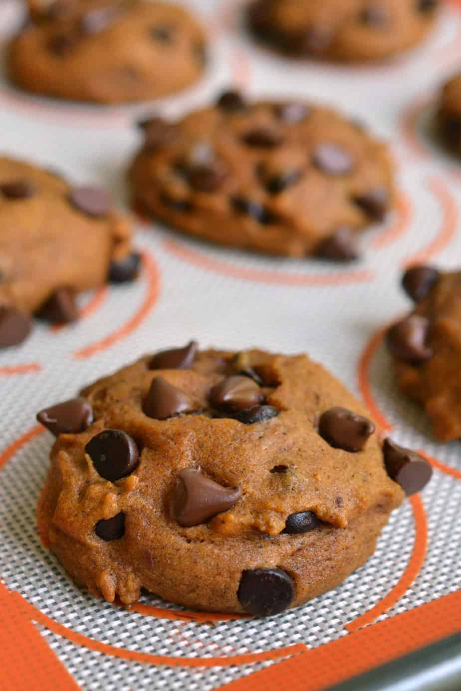 These delectable Pumpkin Chocolate Chip Cookies are the perfect early fall treat.