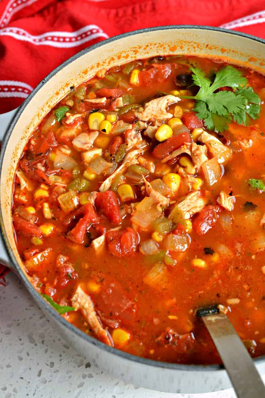 This delectable quick and easy Chicken Taco Soup is family friendly and flavor packed.