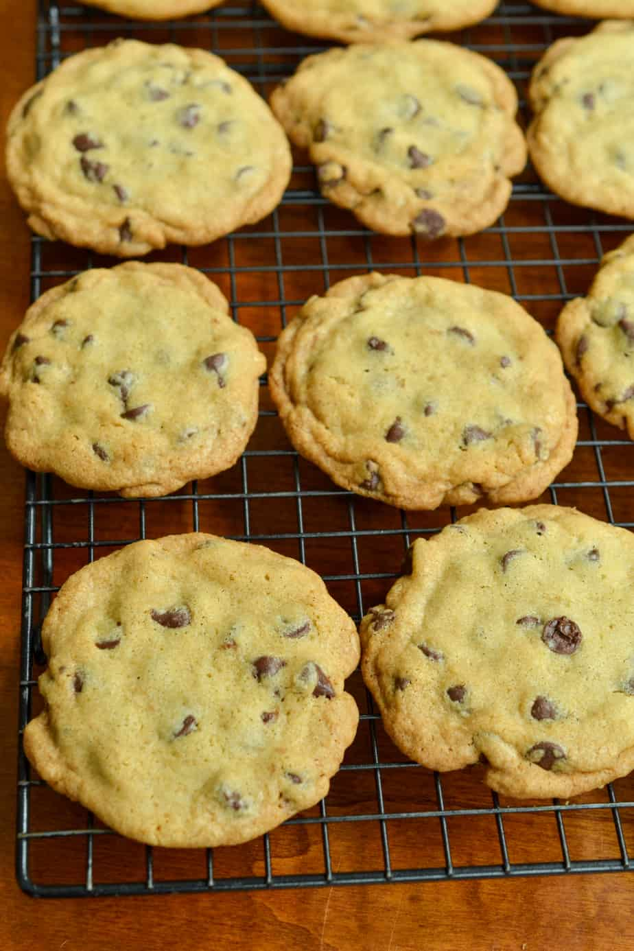 Thin and crispy chocolate chip cookies on a cookie cooling rack.